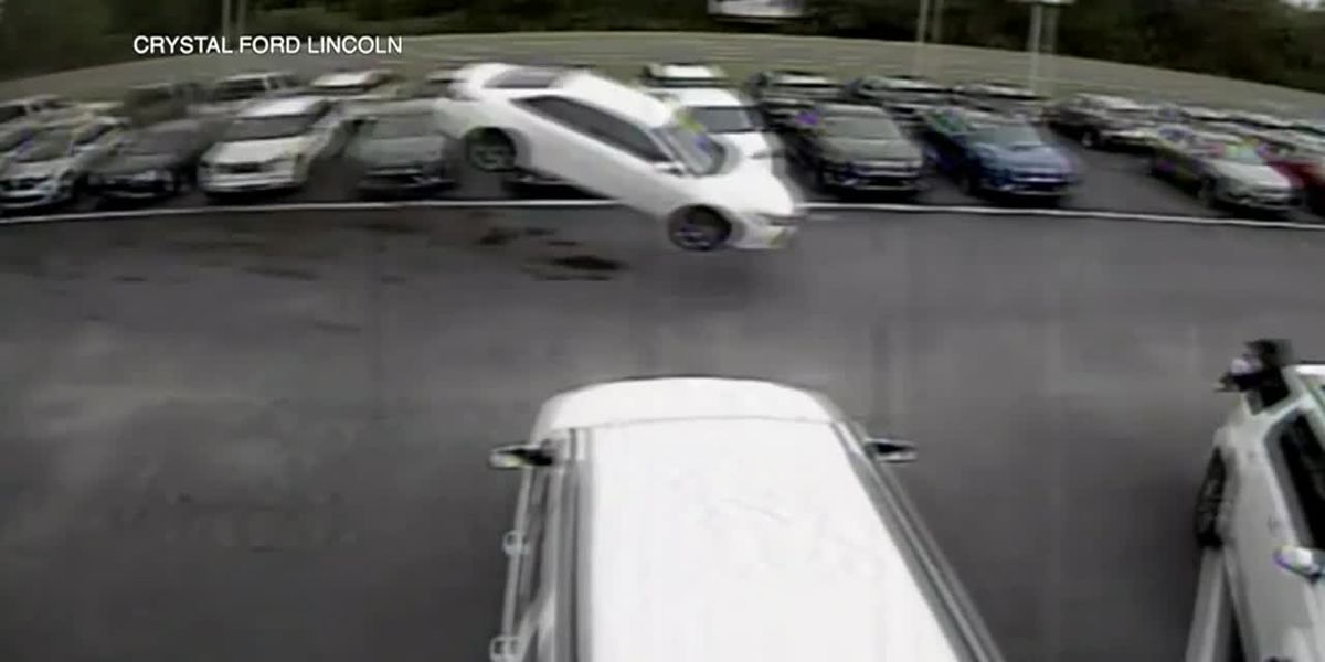 VIDEO: Car flies into Florida dealership