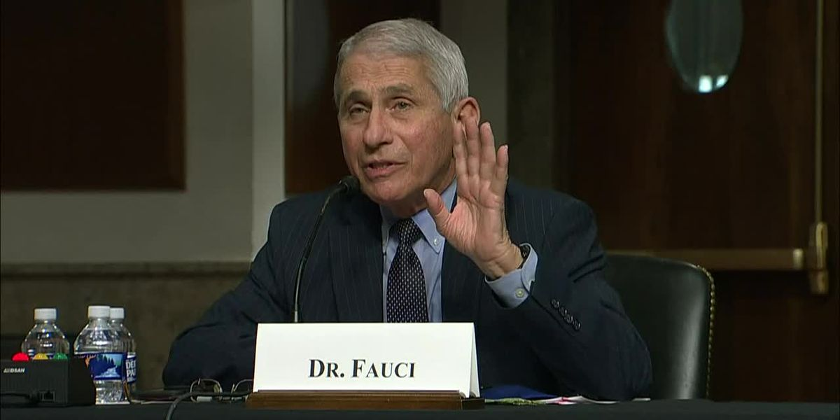 Fauci says Sen. Paul has repeatedly misconstrued facts about the pandemic