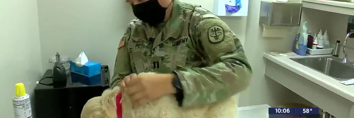 A Day in the Life: Fort Sill Veterinary Clinic-11/5/20