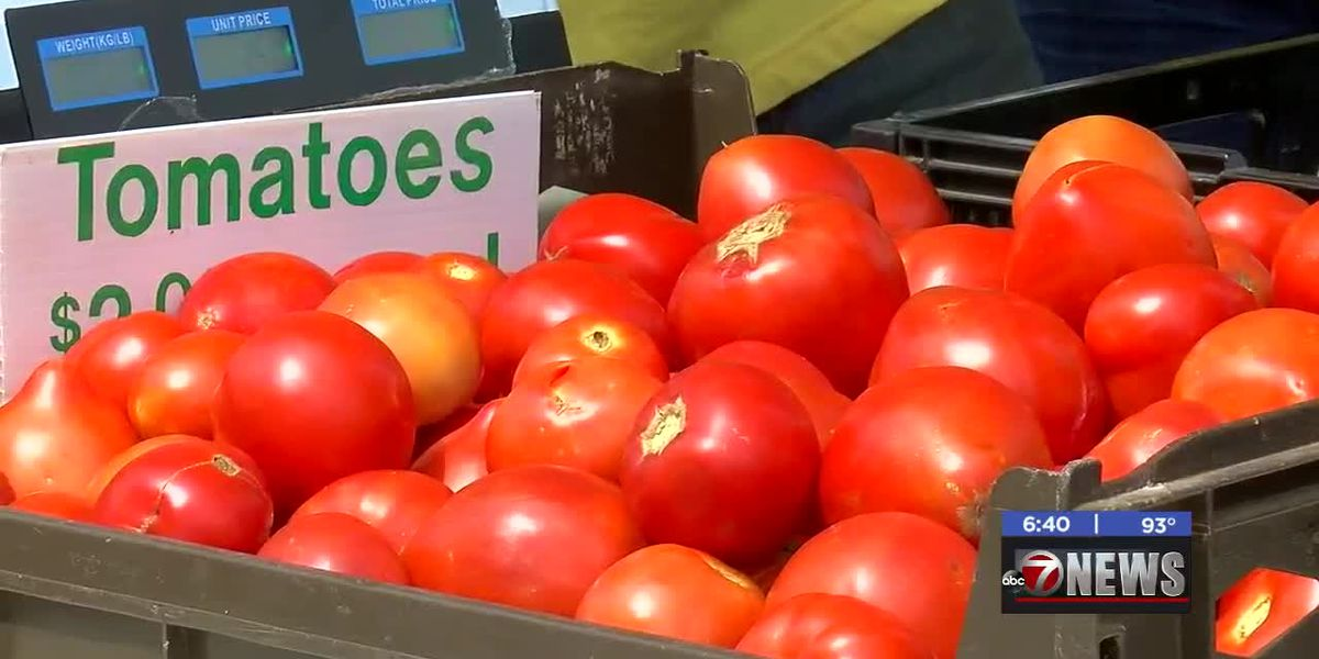 MedWatch: Lawton's 8th Annual Tomato Festival