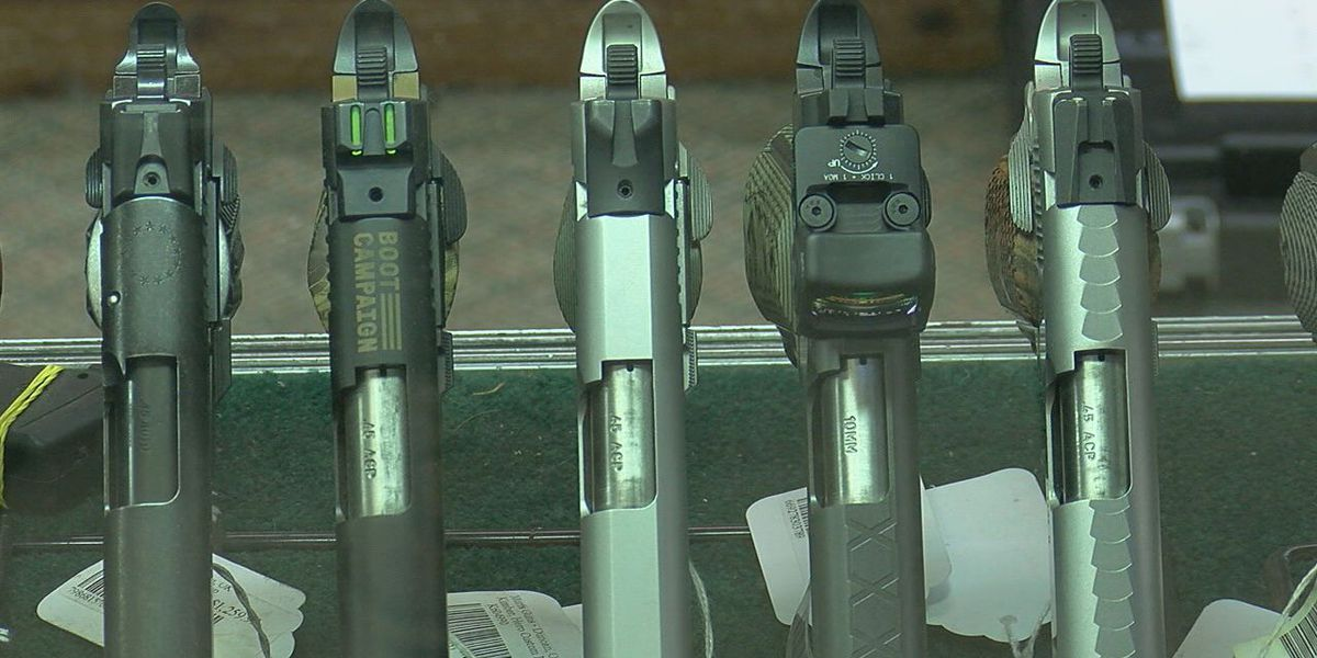 State reps talk about potential 'Constitutional Carry' changes