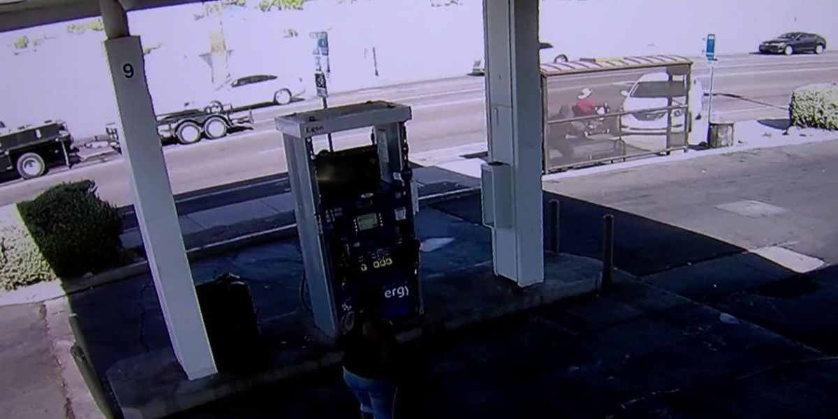 Watch: Woman in wheelchair narrowly avoids car that struck bus stop in Ariz.