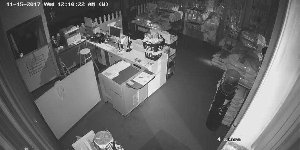 WATCH: Ruff Grooming and Boarding in Altus burglarized