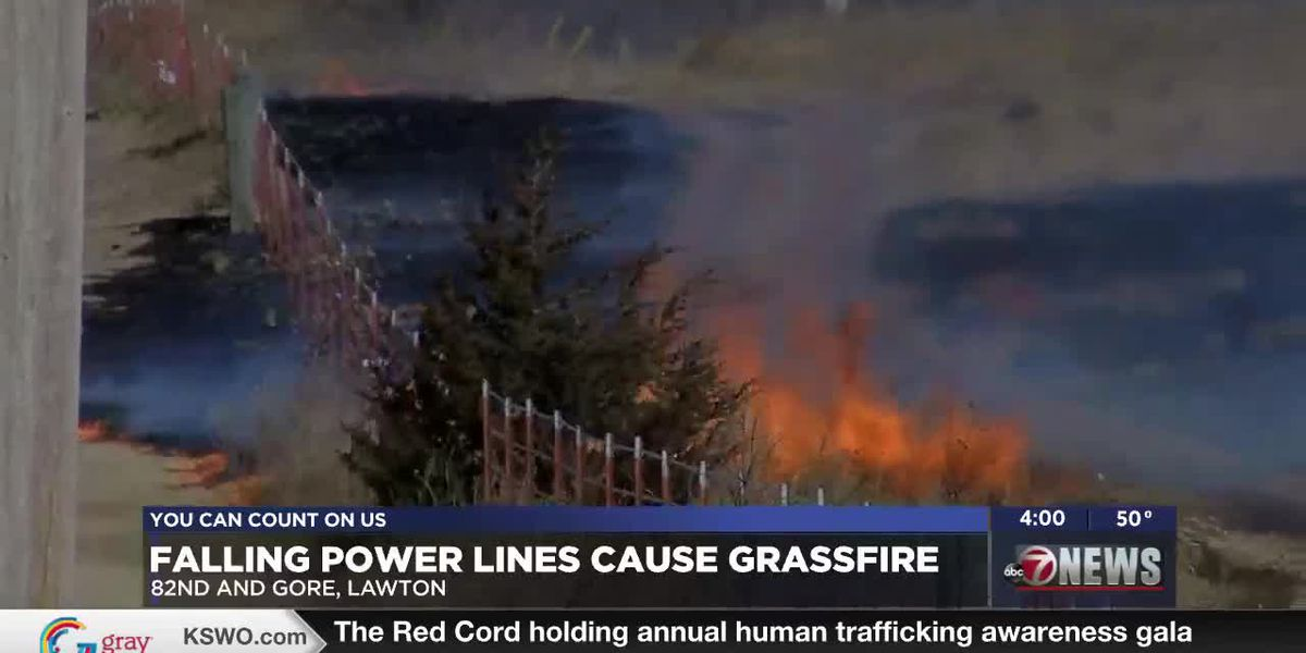 Fallen power lines spark fire at 82nd and Gore