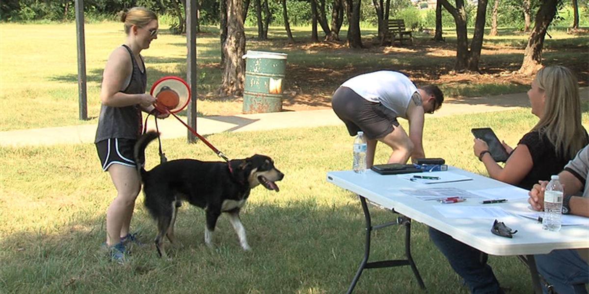 Auditions held at Lawton Dog Park for city's upcoming PSA