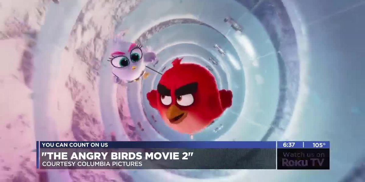 7News at the Movies: The Angry Birds Movie 2 and more