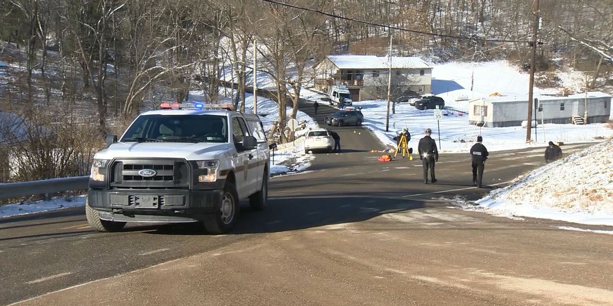 3 siblings struck by car at PA bus stop; 1 killed