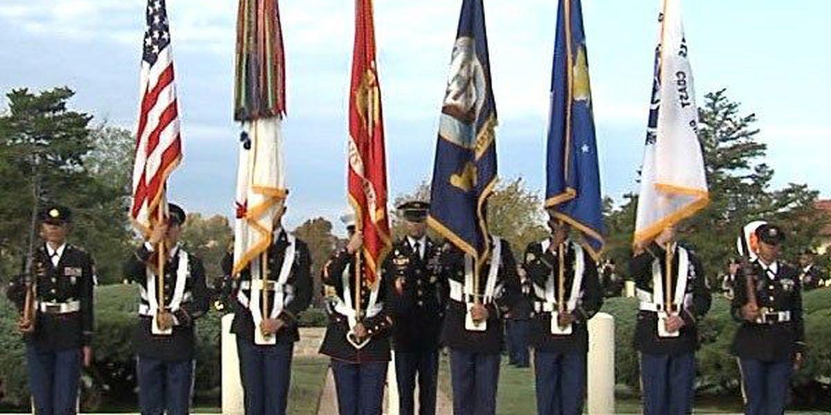 Shine a green light for veterans this Veterans Day