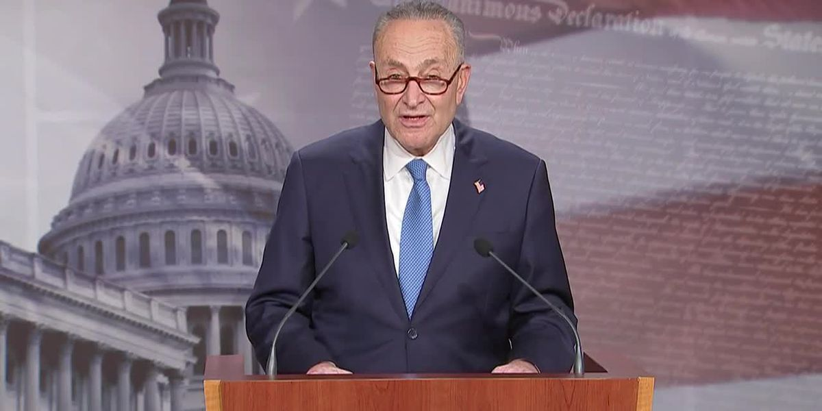 Schumer calls for speedy confirmation of Biden Cabinet picks