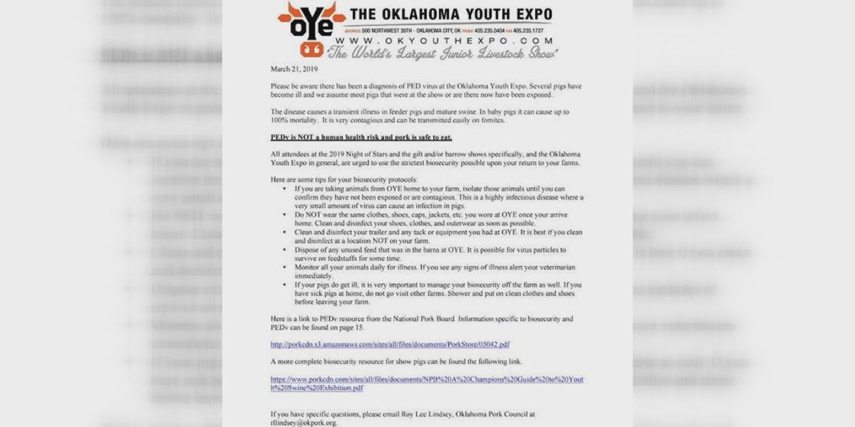 Chattanooga pigs contract PED virus at Oklahoma Youth Expo