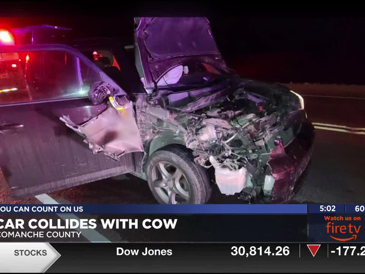 Mother, daughter sent to hospital after hitting cow with car