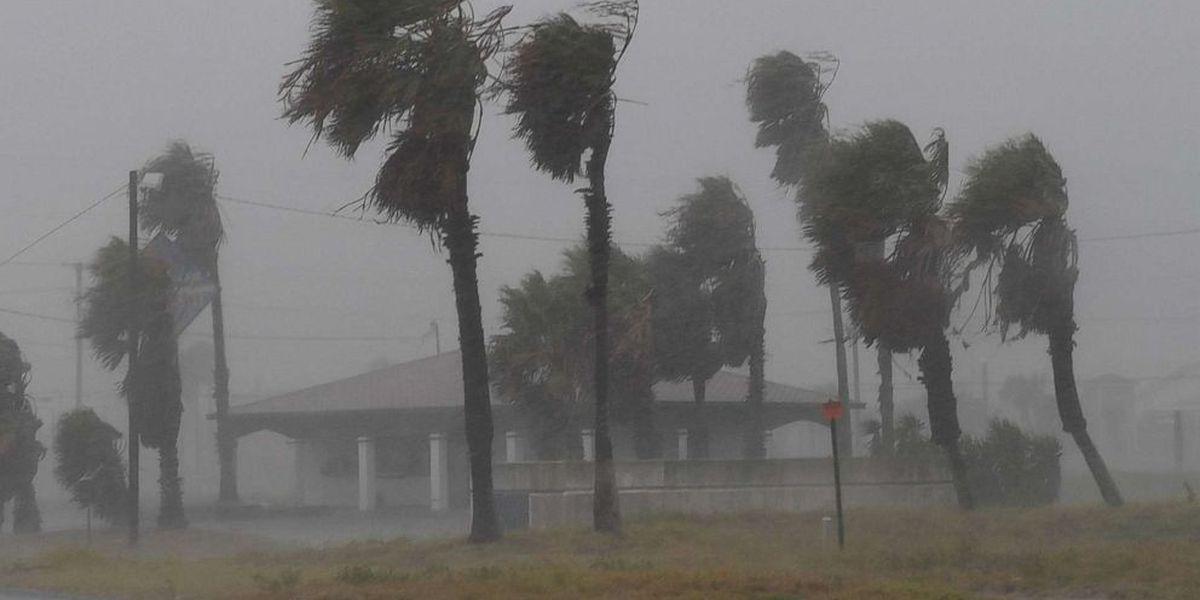 Hurricane Harvey Relief Information