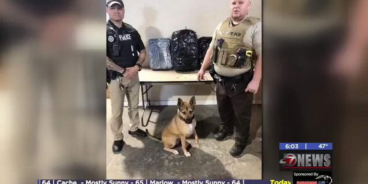 K-9 finds 48 pounds of marijuana during traffic stop