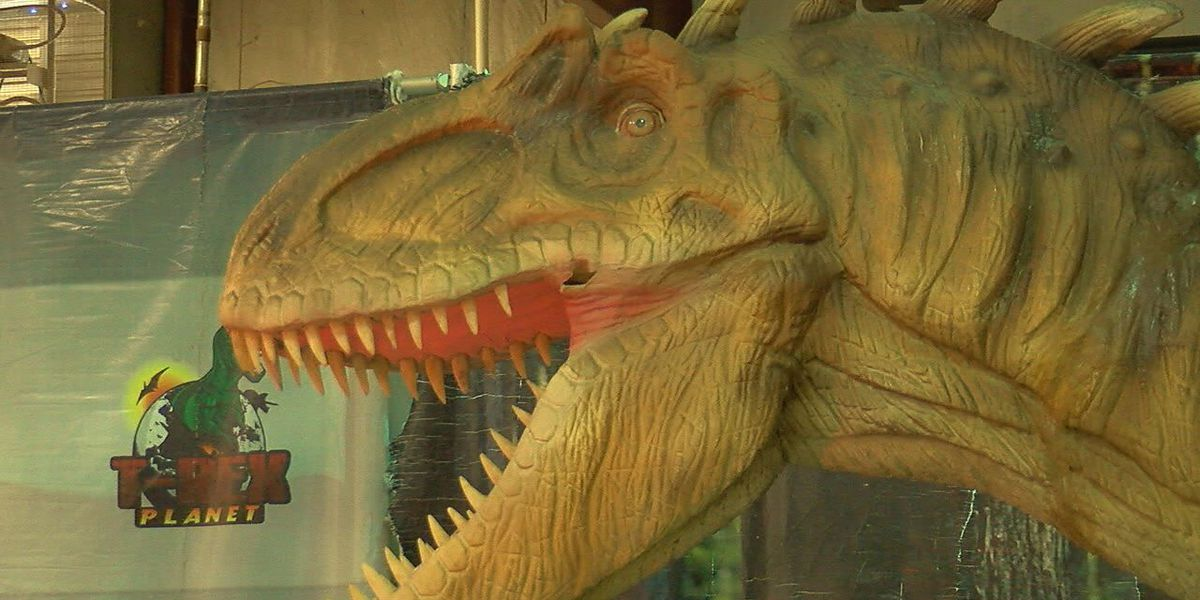 Families learn about prehistoric creatures at T-Rex Planet