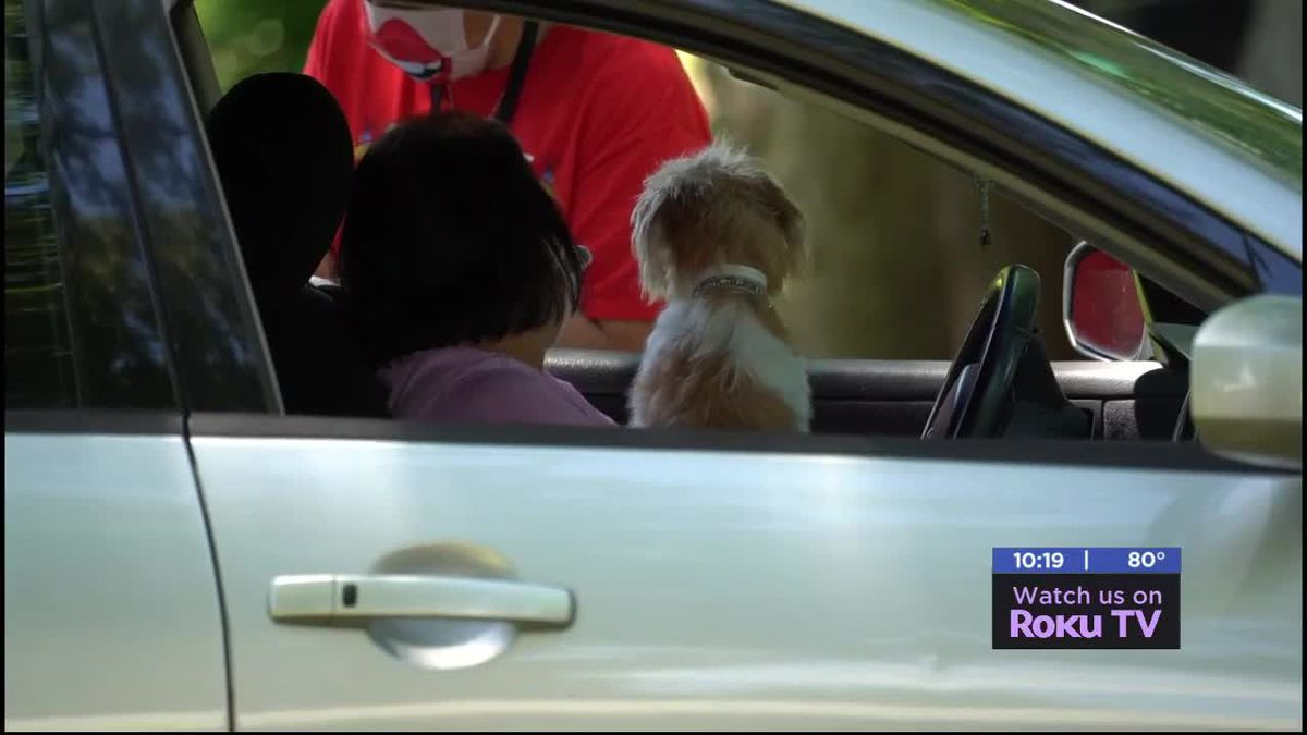 Fort Sill Veterinary Clinic provides free rabies vaccinations