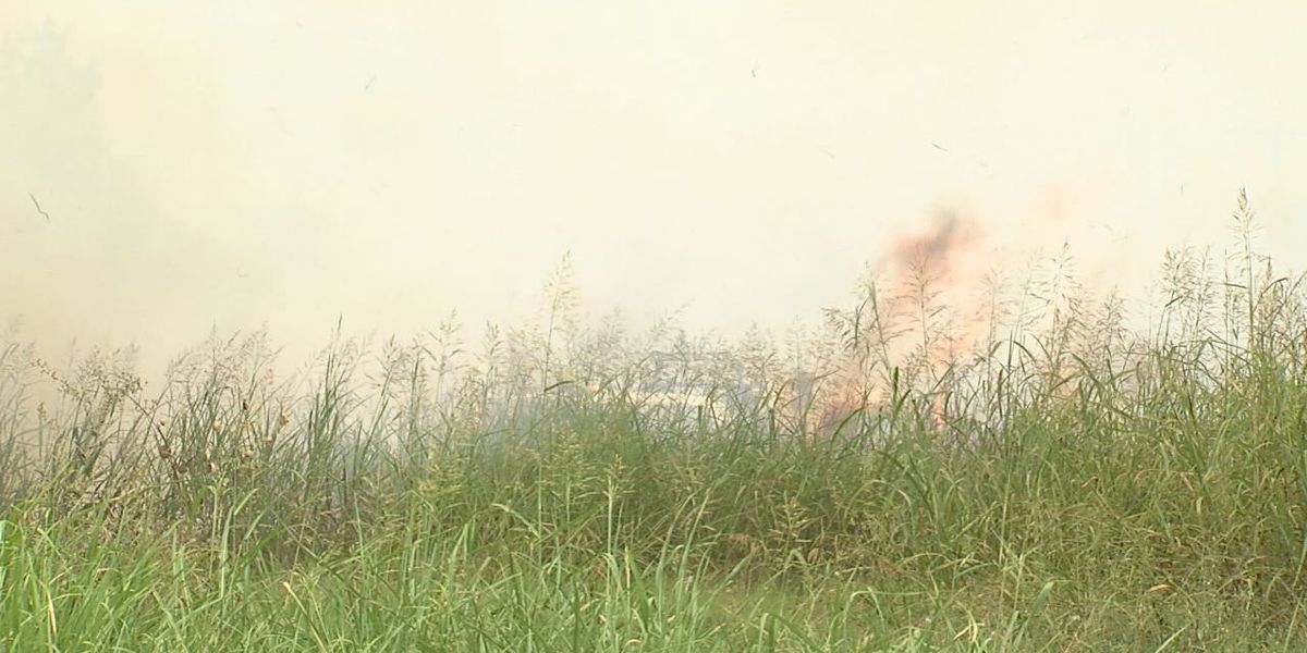 Grass fires flourish in dry conditions