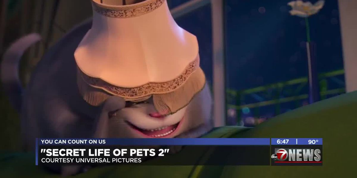 7News at the Movies: Secret Life Of Pets 2 and more