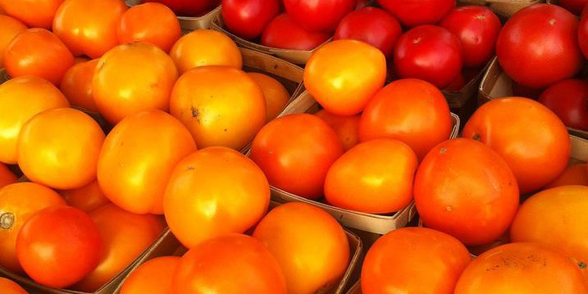 The 6th Annual Lawton Farmers Market Tomato Festival will be July 8th