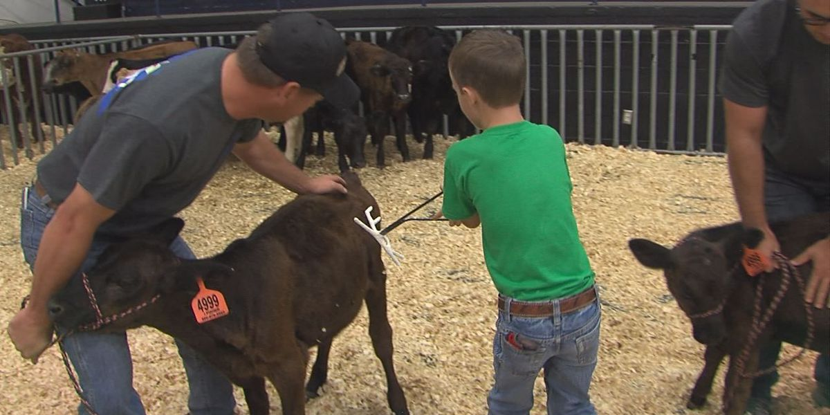 Kids participate in Farm Hand Olympics