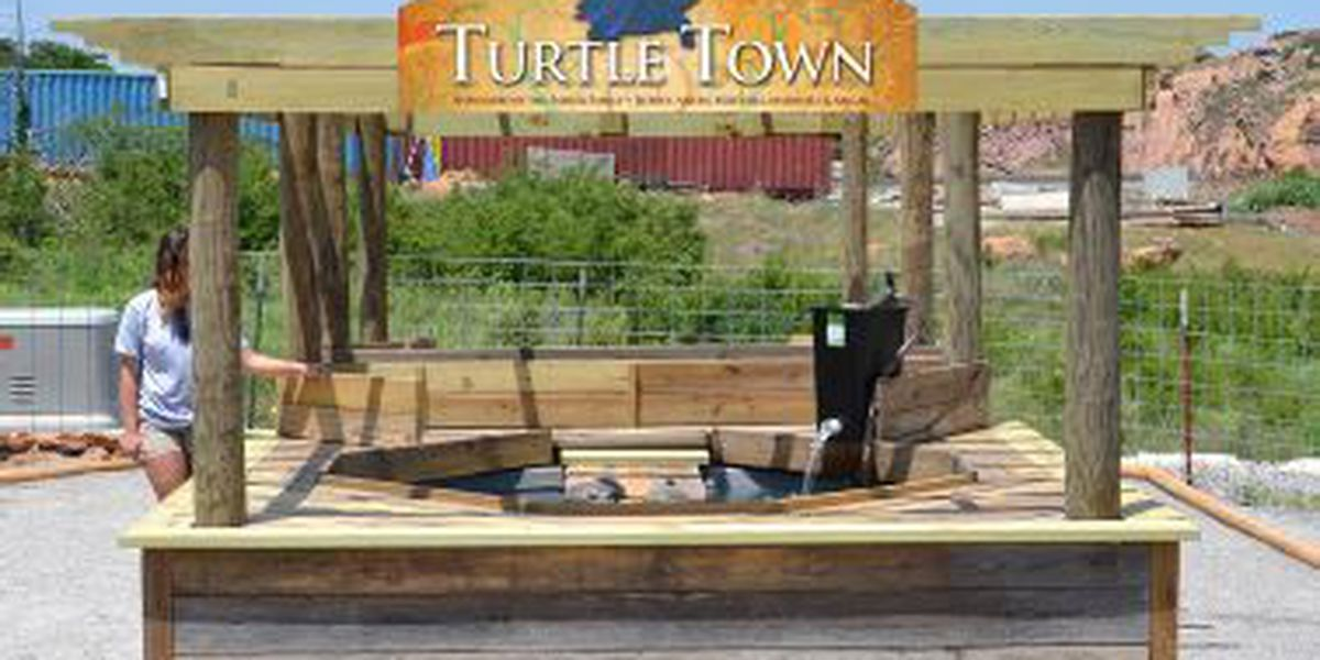 YOU'RE INVITED: Ribbon Cutting for The Sadler Family Turtle Town