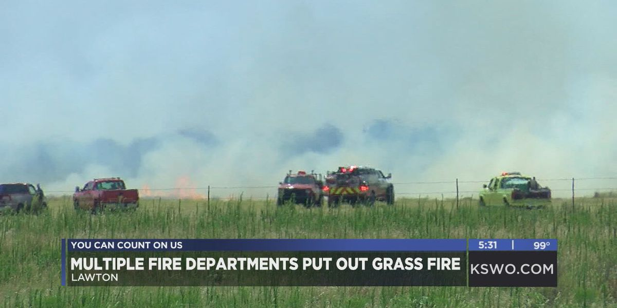 Multiple departments extinguish Bethel Road grass fire