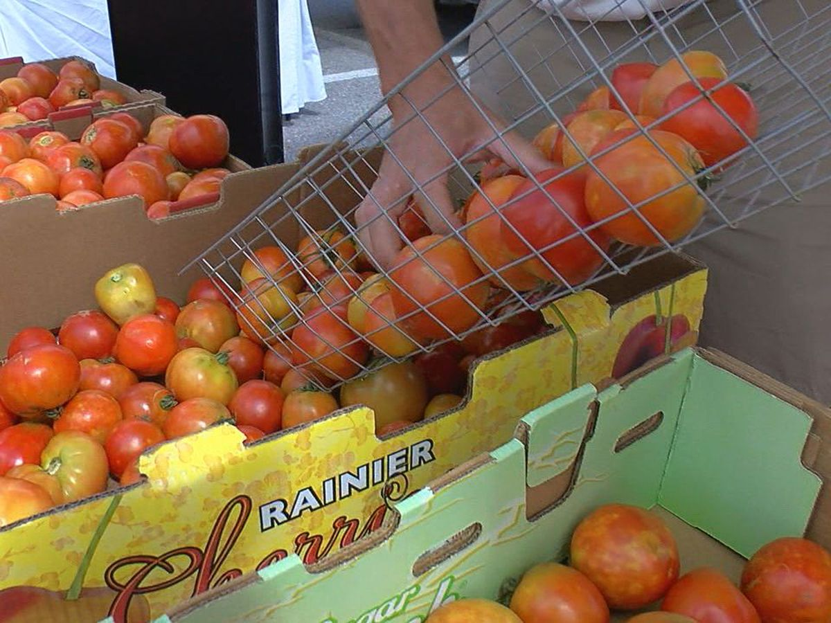 Lawton Farmer's Market hosts 8th Annual Tomato Festival