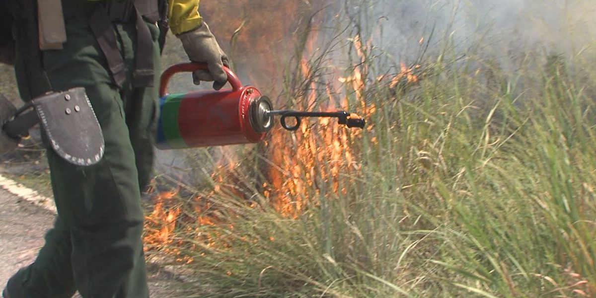 Firefighters battle prescribed blaze and soaring temperatures