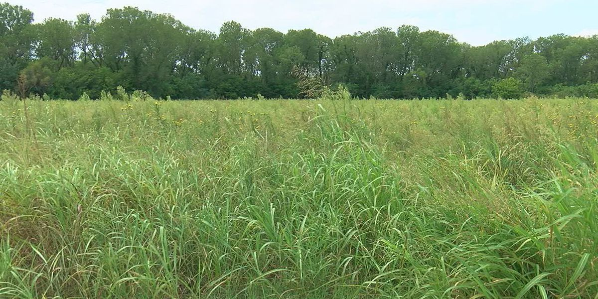 City Council approves changes for hunting season at Lake Ellsworth