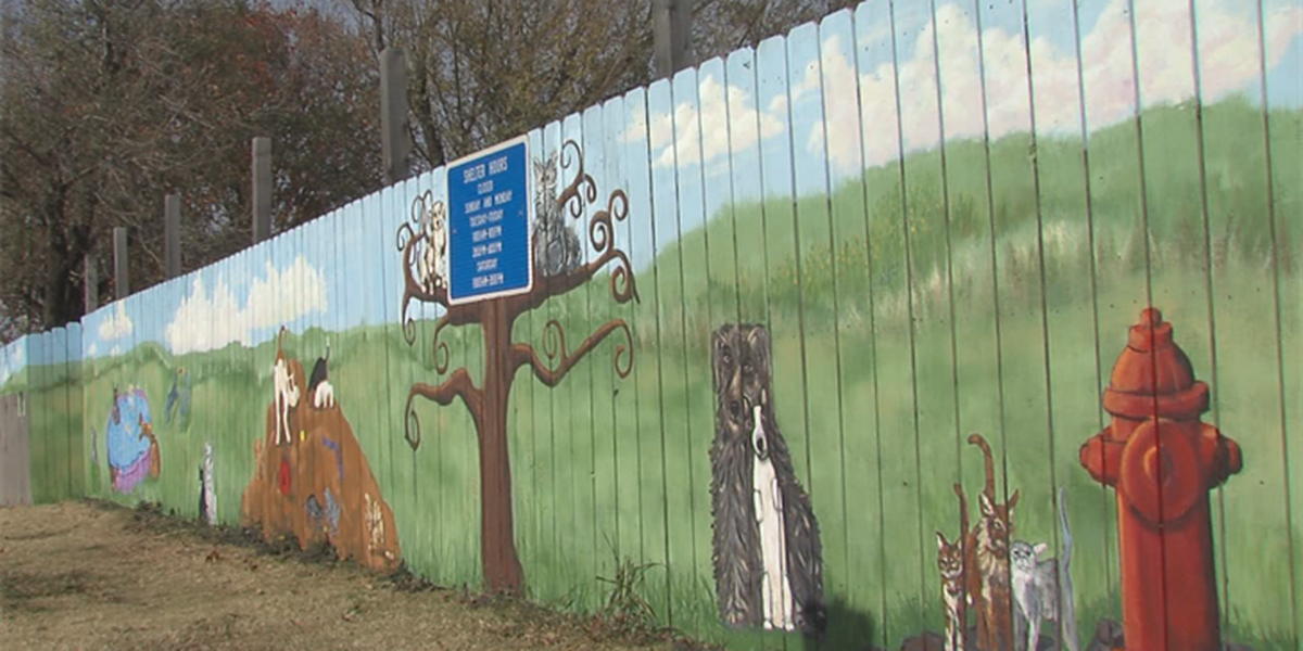 Lawton Animal Welfare's mural is complete