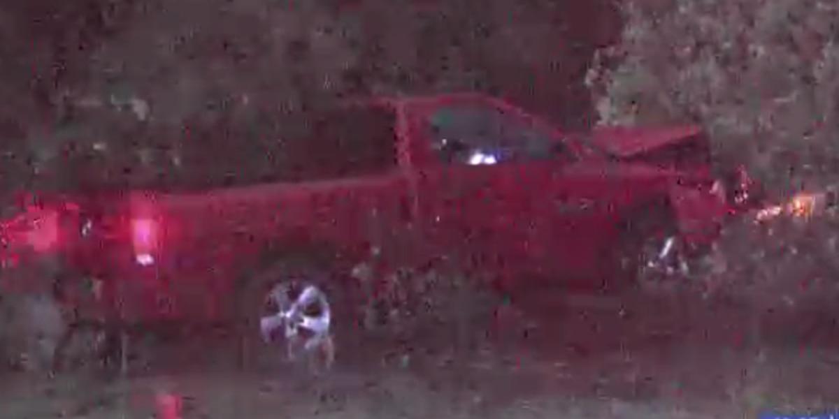 Pickup truck hydroplanes; hits tree