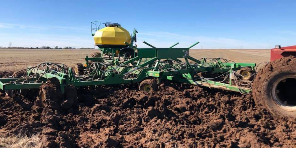 Oklahoma's canola and wheat crops hindered by severe weather