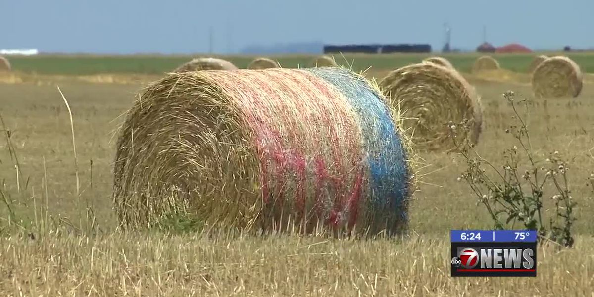 Patriotic hay bales seen throughout Southwest Oklahoma-5/20/2020