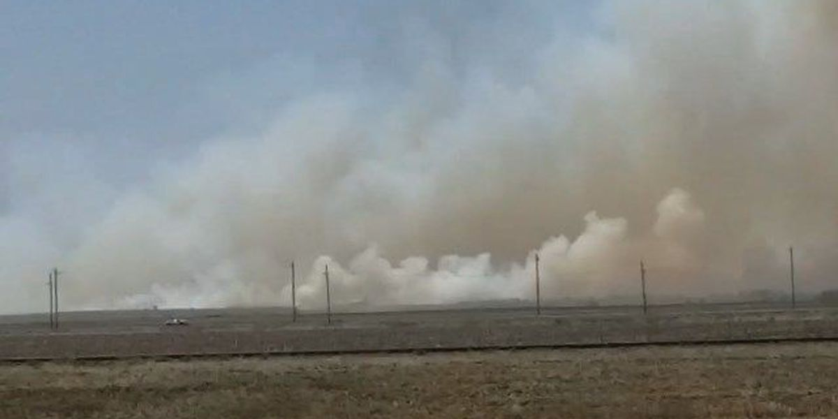 Drought, wildfires force ranchers to scramble for feed