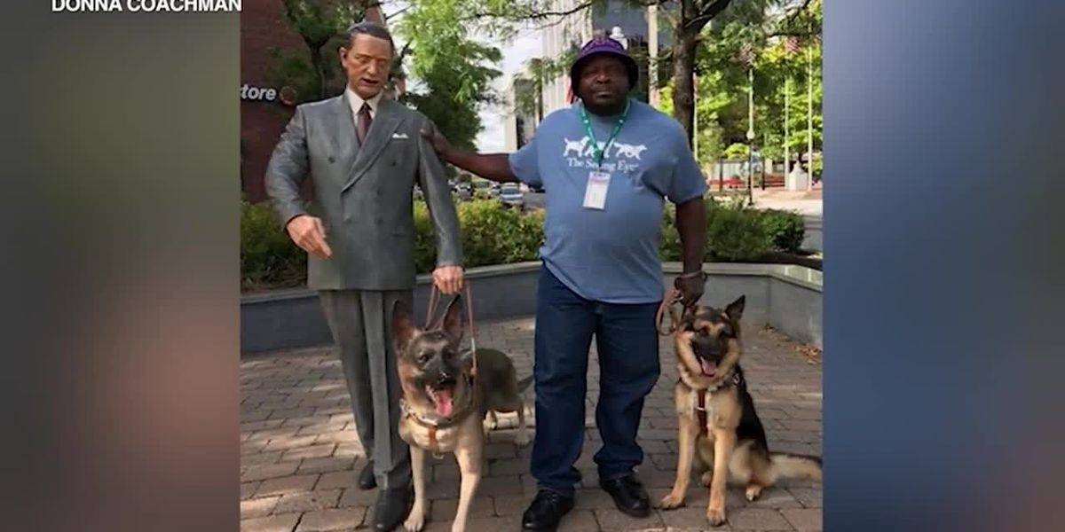 'Right will prevail': Stolen service dog returned to blind owner in Illinois