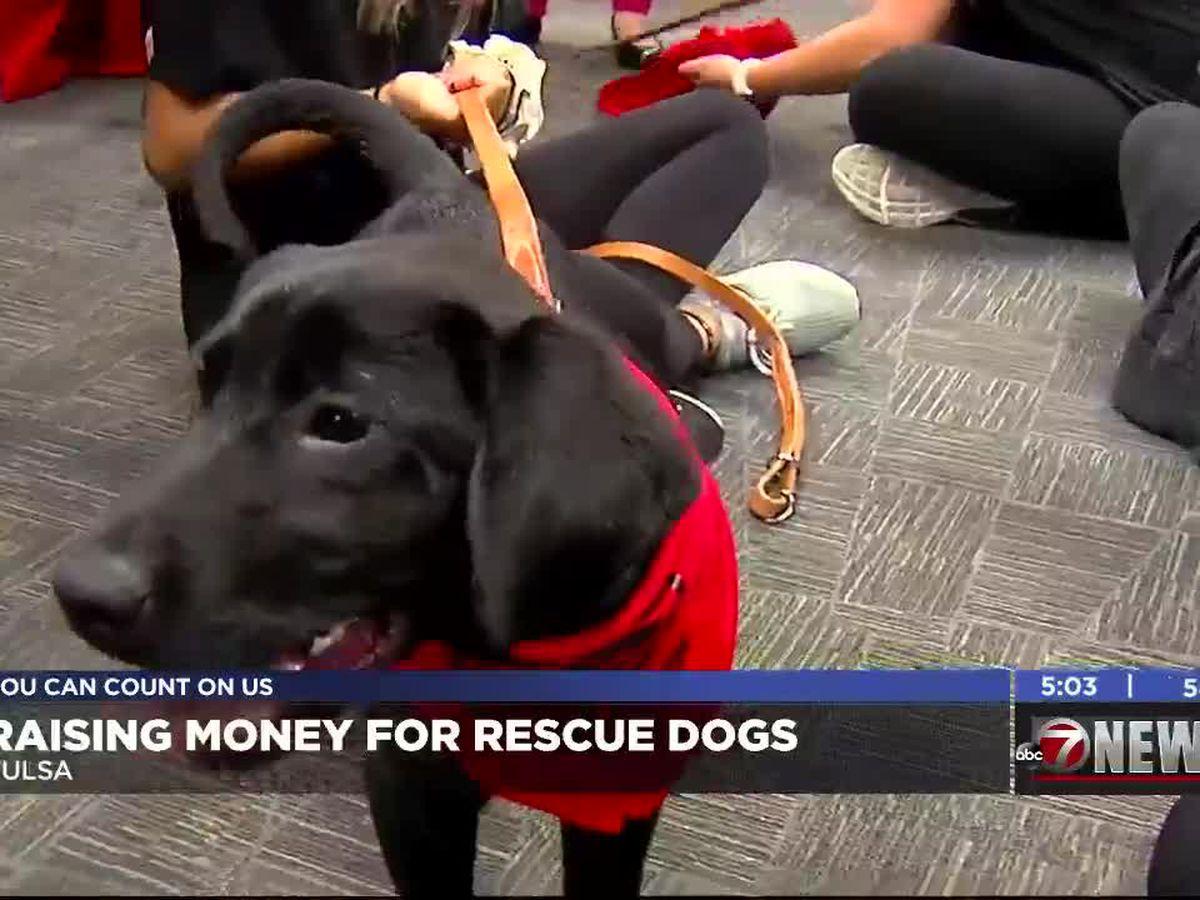 Barry Switzer raises money to train rescue dogs