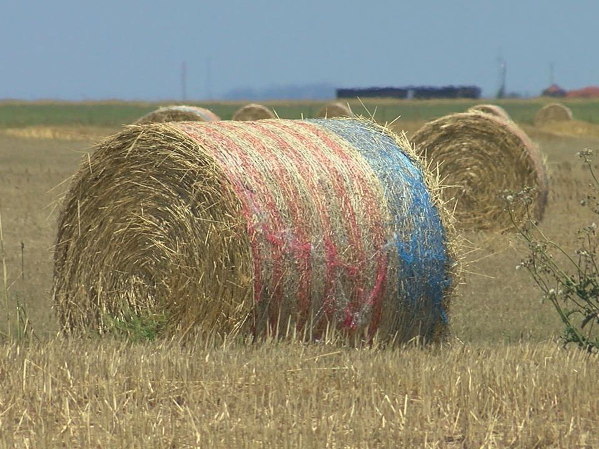 Patriotic hay bales seen throughout Southwest Oklahoma