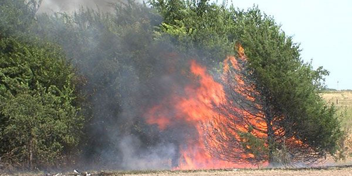 Grassfire scorches a couple of acres