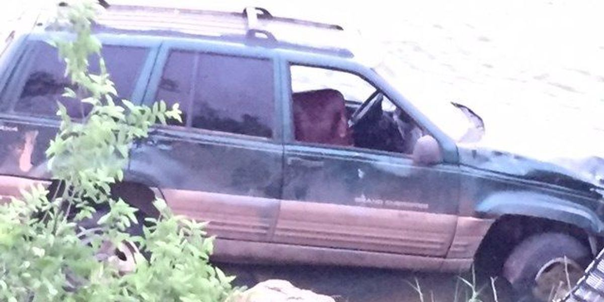Man arrested after driving into lake