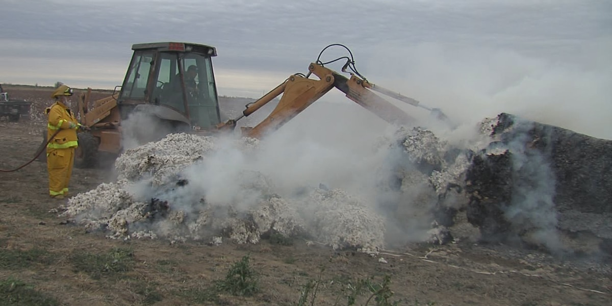 Fire destroys cotton module