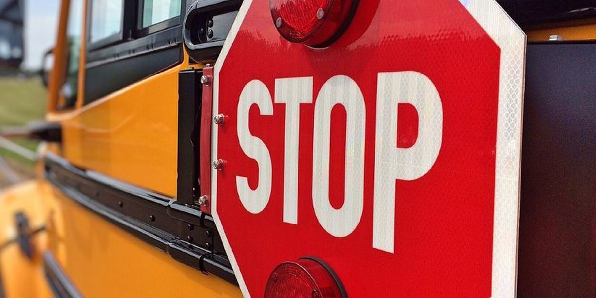 Walters Public School cancels school due to flu absences