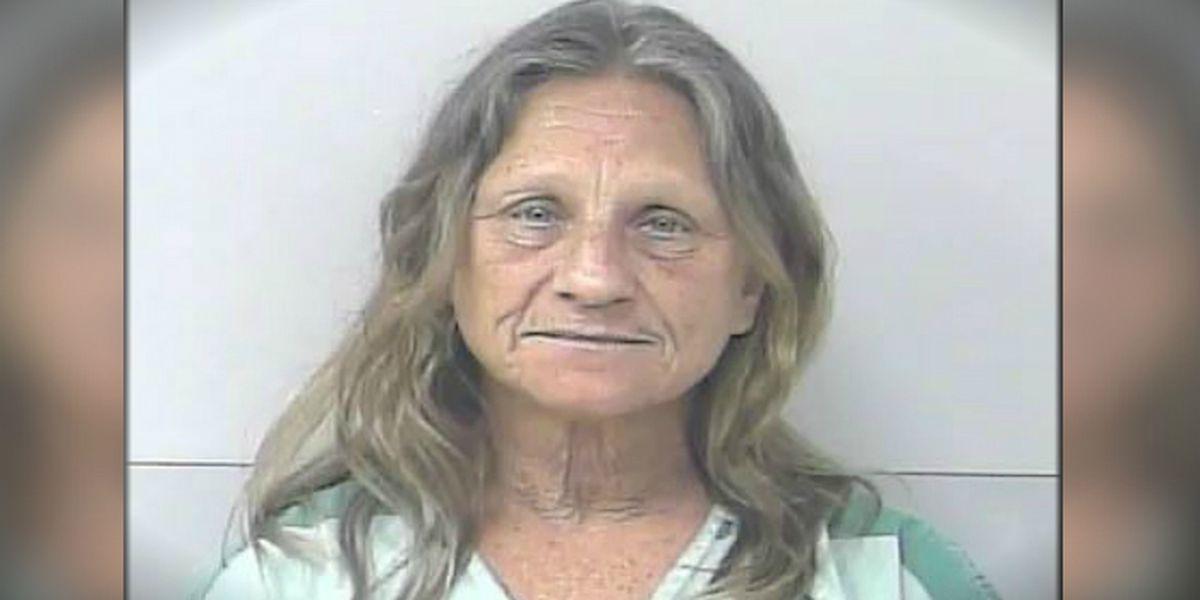 Florida woman's sex act causes driver to run red light, deputies say