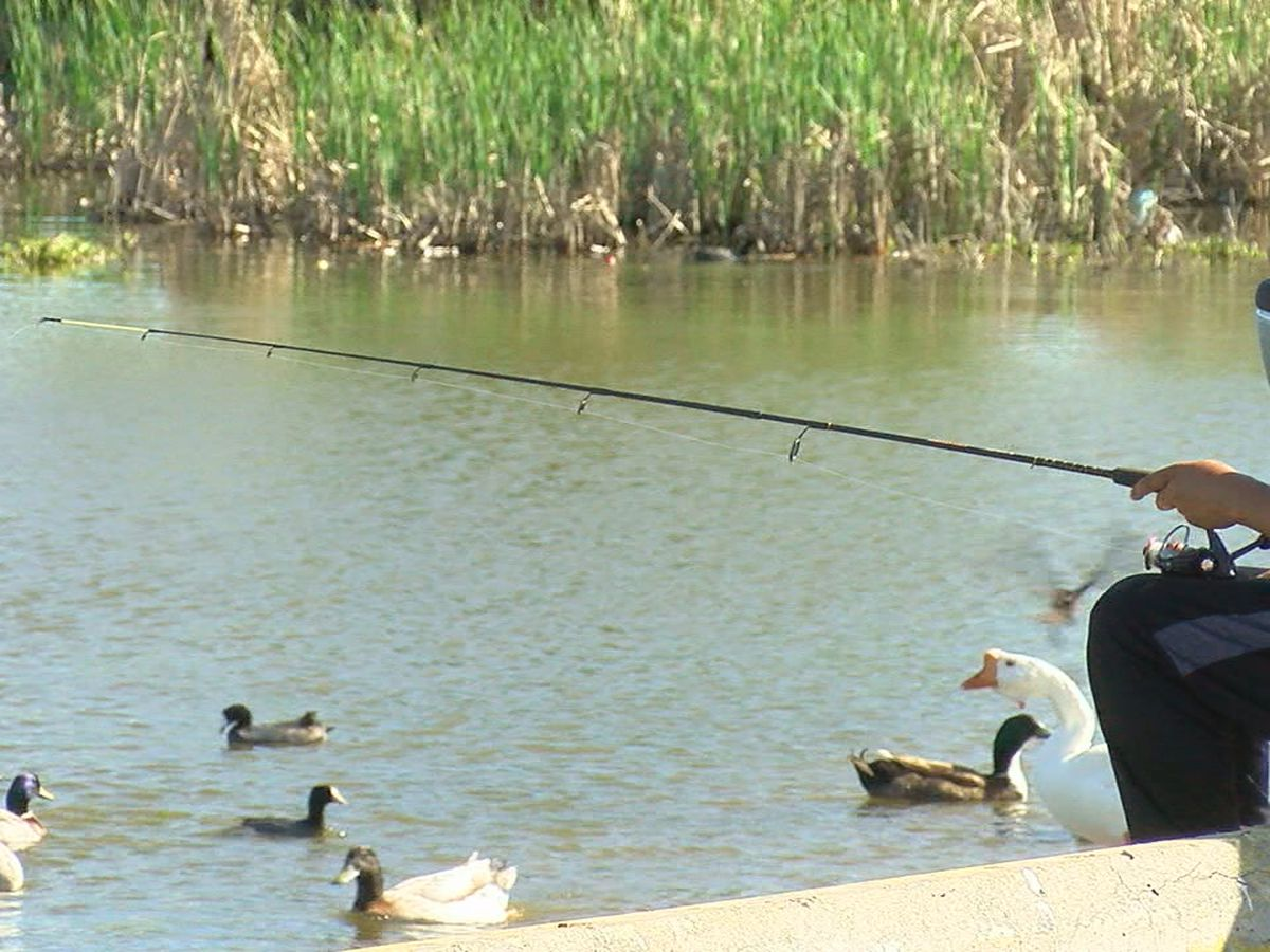City leaders explain decision to keep city property open for fishing, hunting