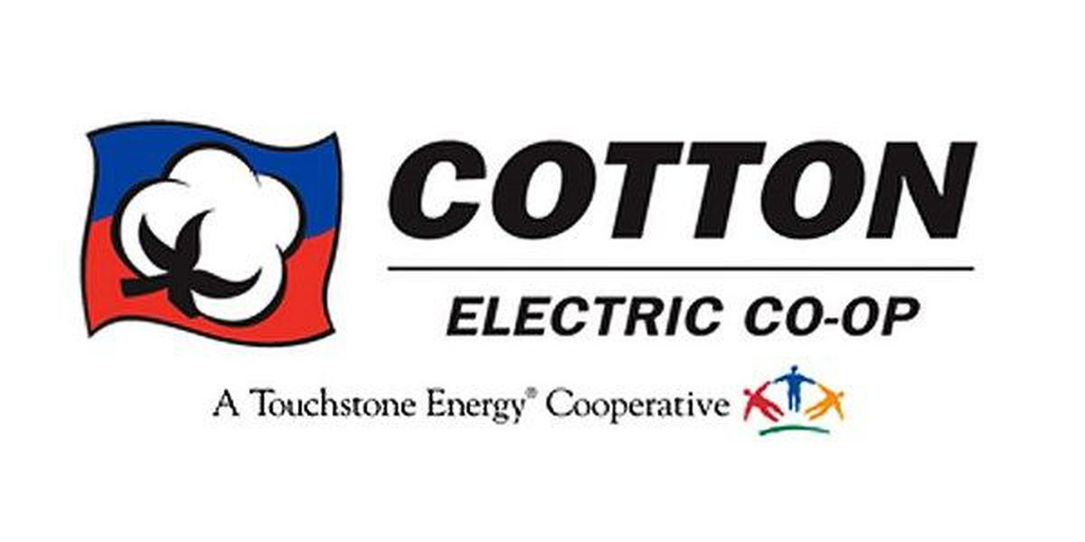 Cotton Electric essay finalists announced