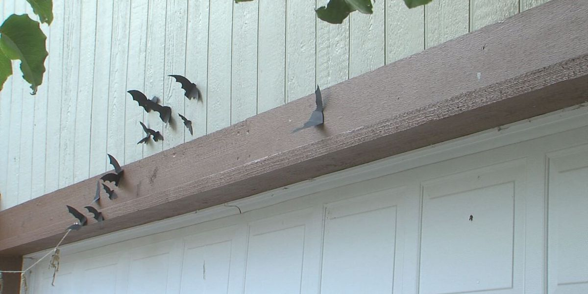 Lawton woman believes Halloween decorations destroyed