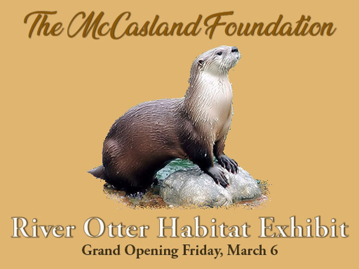 Medicine Park Aquarium & Natural Sciences set to open river otter exhibit