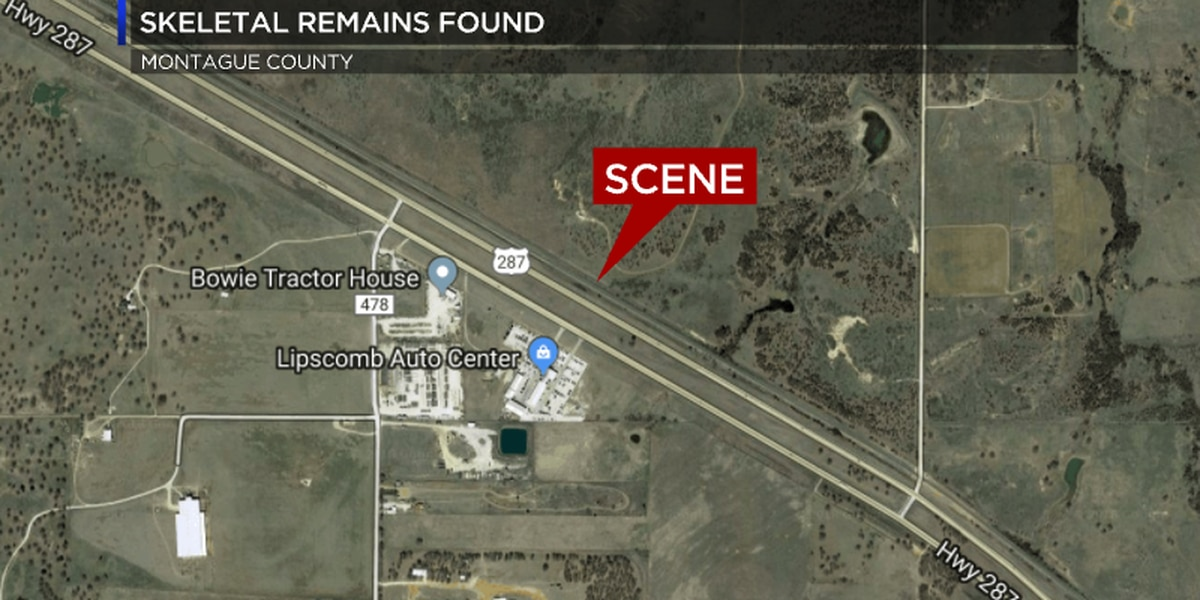 Railroad workers discover human remains near Bowie
