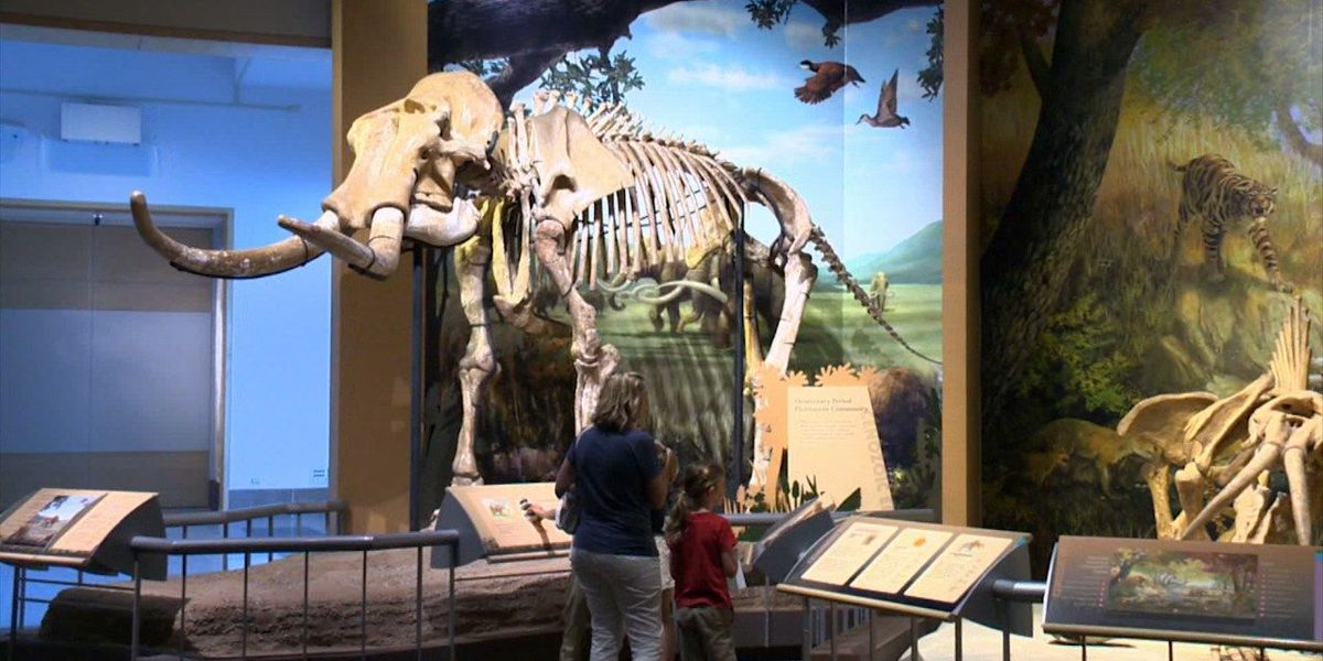 Sam Noble Museum invites little archeologists to join Spike's Club