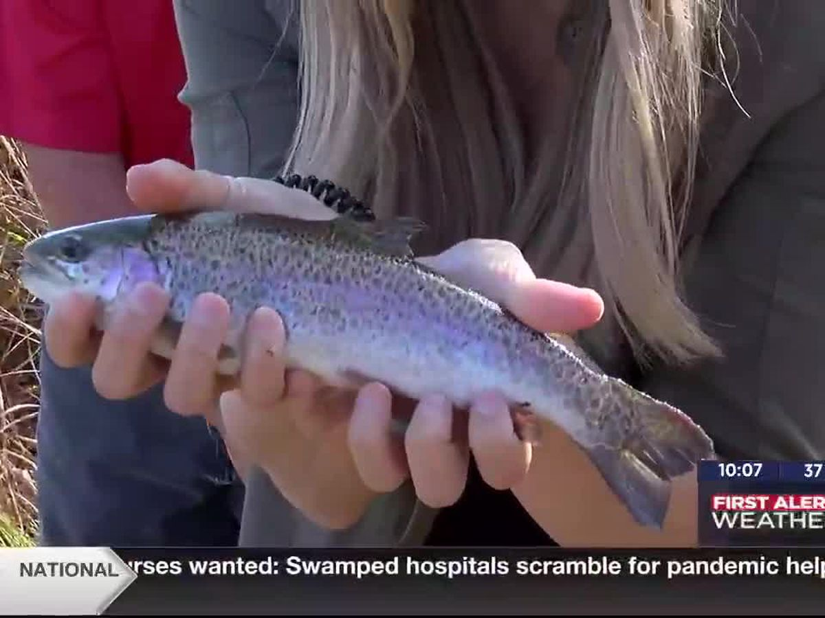 MAKENZIE'S OUTDOOR ADVENTURES: Trout fishing in Medicine Park