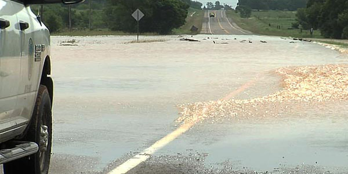 Massive rainfall causes flooding in Ringling