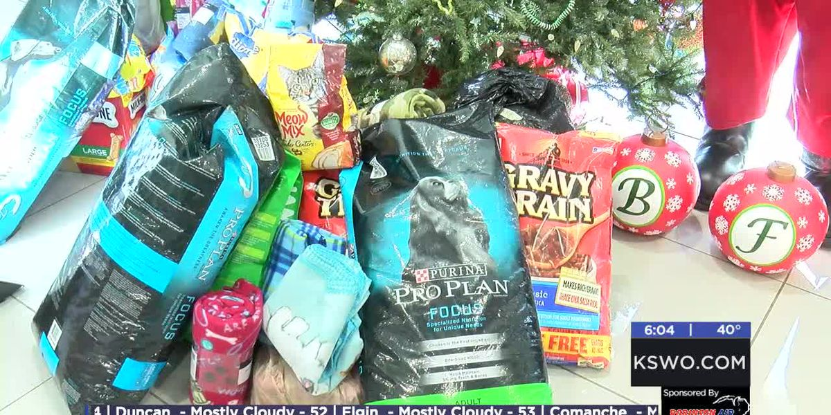 Billingsley's Operation Santa Paws helps local animals